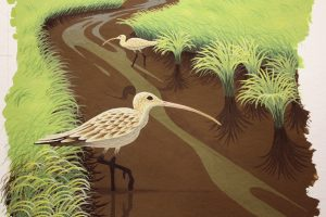 Painting Feathers and Grass on a Painting of a Curlew - A view of the finished feathers on the two curlews wading in the stream.