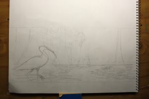 "Wood Stork Water Lilies Pencil Sketch - This is a pencil drawing of the composition done on an 18""x24"" sketch pad."
