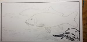 Beginning the ink drawing